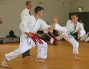 Most-famous-martial-arts-in-the-world-karate
