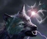 Wolf blitz