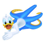 Donald (Squid)