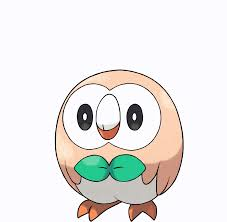 Rowlet | Jaden's Adventures Wiki | FANDOM powered by Wikia