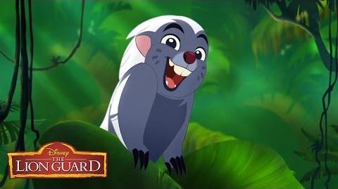 Zuka Zama Music Video - The Lion Guard- Return of the Roar - Disney Junior