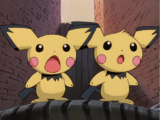 Pichu Brothers