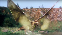 Dragon 2001 01