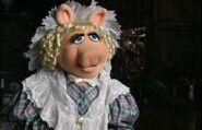 PiggyMCC