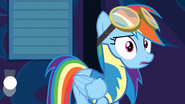 Rainbow Dash realizing S3E07
