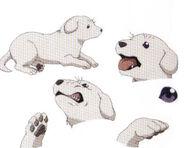Cerberus cachorro settei