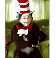 The cat in the hat-293x307