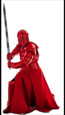 Paetorian guard 2