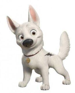Bolt-Company-bolt-the-dog-11564376-321-400
