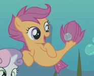 Scootaloo sea pony