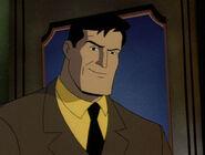 Bruce Wayne BTAS