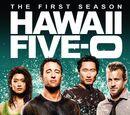 Season 1 (Hawaii Five-0)