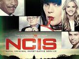 Season 15 (NCIS)