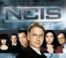 Season 2 (NCIS)