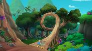 Old Twisty Tree-Race-Around Rock02