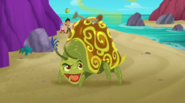 Stinkbug-Pirate Rock!