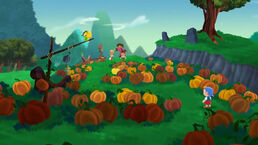 The Pirate Pumpkin Patch01