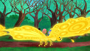 Golden Butterfly-Big Bug Valley!04