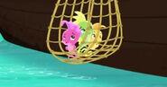 Seahorse-The Seahorse Roundup11