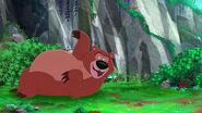 Bear-Captain Hook's Last Stand17