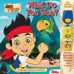 Jake and the Neverland Pirates-What do You See