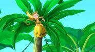 Monkey-Captain Hook's Parrot07