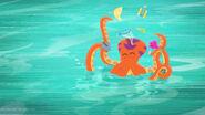 Octopus16