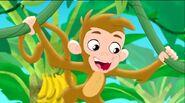 Monkey-Captain Hook's Parrot04