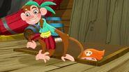 Yo-Yo-The Monkey Pirate King01