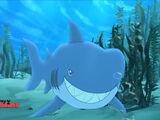 Never-Sharks