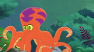 The Octopus02