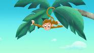 Monkey-Hook's Playful Plant!01