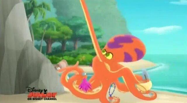File:Octopus12.jpg