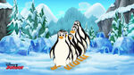 Penguins-The Arctic Pearl04