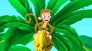 Monkey-Captain Hook's Parrot06