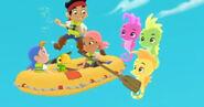 Seahorse-The Seahorse Roundup21