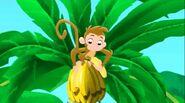 Monkey-Captain Hook's Parrot05