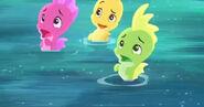 Seahorse-The Seahorse Roundup14