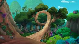 Old Twisty Tree-Race-Around Rock01