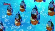 Pirate Piranhas-Attack Of The Pirate Piranhas19
