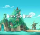 Never Say Never!/Transcript