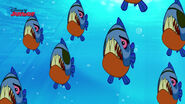 Pirate Piranhas-Attack Of The Pirate Piranhas18