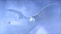 Snowi1