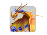 Dragons icon DEATHSONG