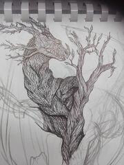 Drzewiecpoczątki