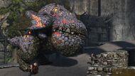 Eruptodon Gallery 3 wm