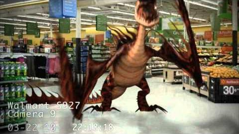 Dragons Caught on Walmart Cameras 4