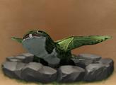Alpha Shadow Hatchling