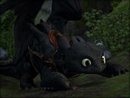 -Toothless-how-to-train-your-dragon-32987223-800-600