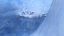 Glacier-island-03